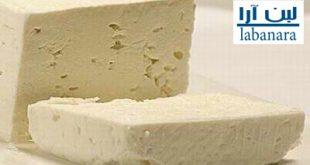 فروش عمده پنیر تبریز