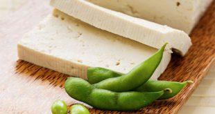 تولید پنیر گیاهی